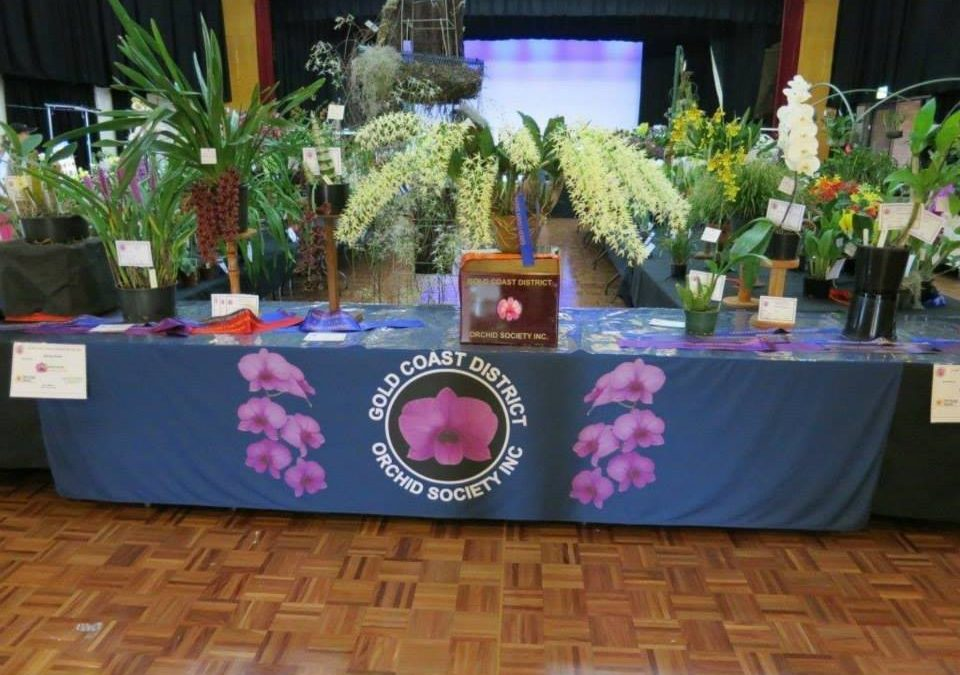 Enjoy a Fantastic Array of Orchids at Spring Show 2018